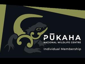 Individual Membership Card