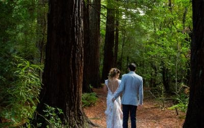 Why You Need a Forest Wedding at Pūkaha